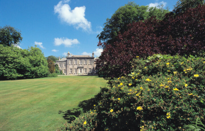 Trewithen House situated in the gardens